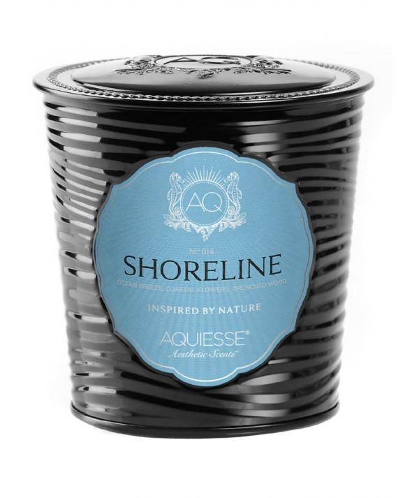 shoreline__70970.1476387419.1280.1280