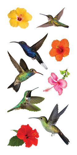Hummingbird_Stickers__34982.1496946342.500.500